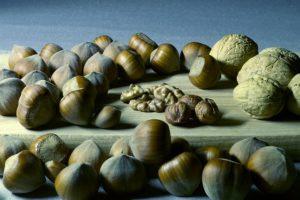 Quels sont les différents compléments alimentaires ?